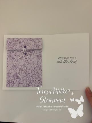 In card DSP envelope