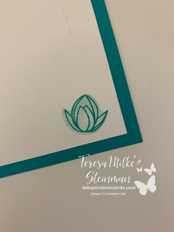 Lotus inside wm