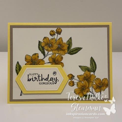Birthday Blossoms wm